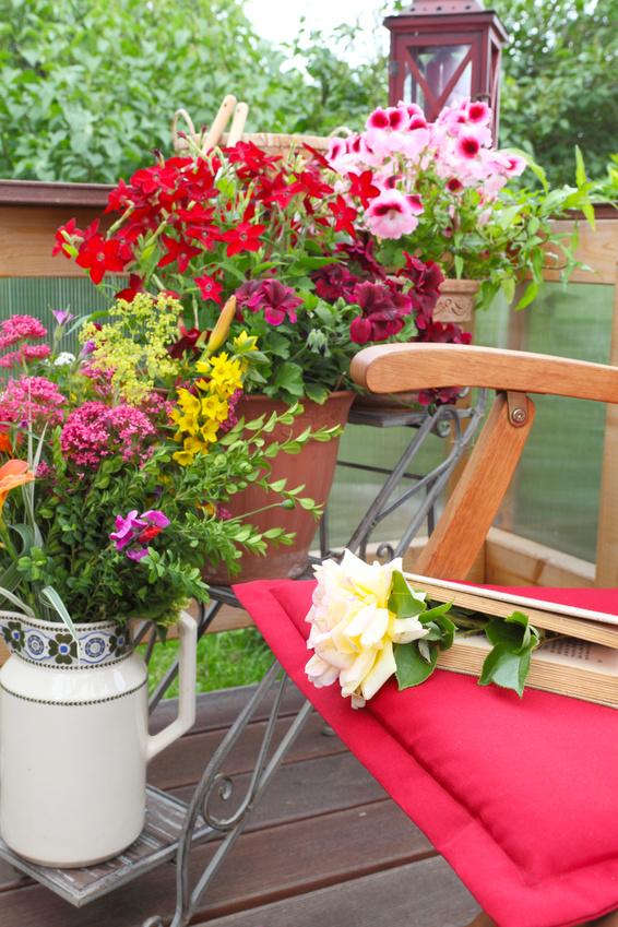 Blumen auf einer sommerlichen Terasse