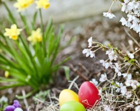 Deko-Eier im Osternest