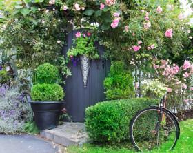 Bepflanzter Vorgarten mit Tuer