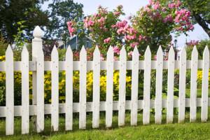 Sichtschutz Im Garten Zaun Oder Hecke