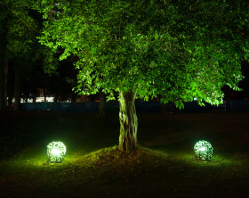 Bäume als Lichtskulpturen