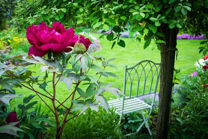 Viktorianischer Garten heute