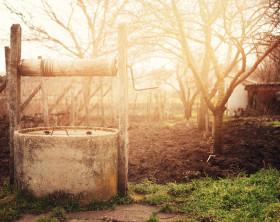 Ein Garten mit Brunnen