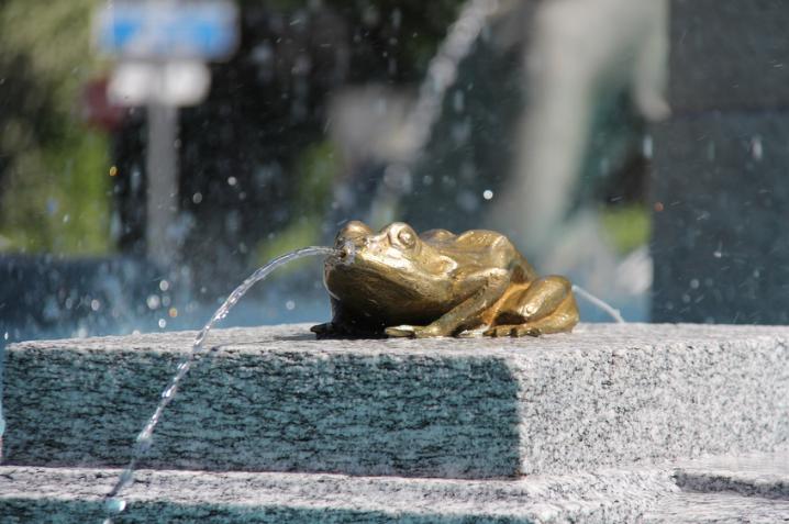 Granitbrunnen mit Mächenfrosch