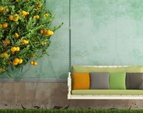 Gartenkissen Trends
