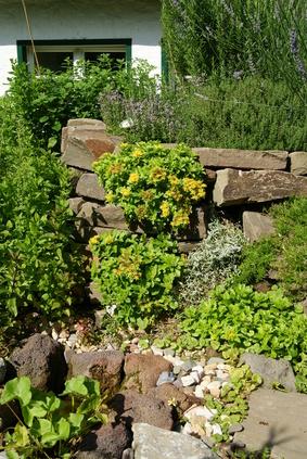 Üppig Bepflanzte Trockenmauer