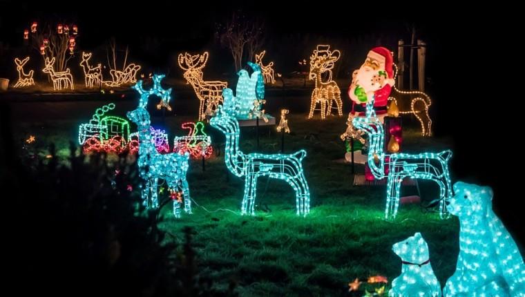 Effektvolle Gartenbeleuchtung zu Weihnachten