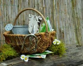 Frühjahrsputz im Garten
