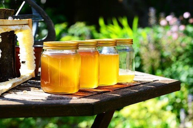 bienenfreundliche Pflanzen Honig