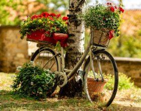 Der Do it Yourself Garten (inklusive Upcycling)