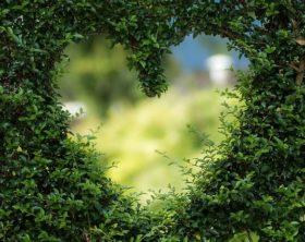 Einen kleinen romantischen Garten gestalten